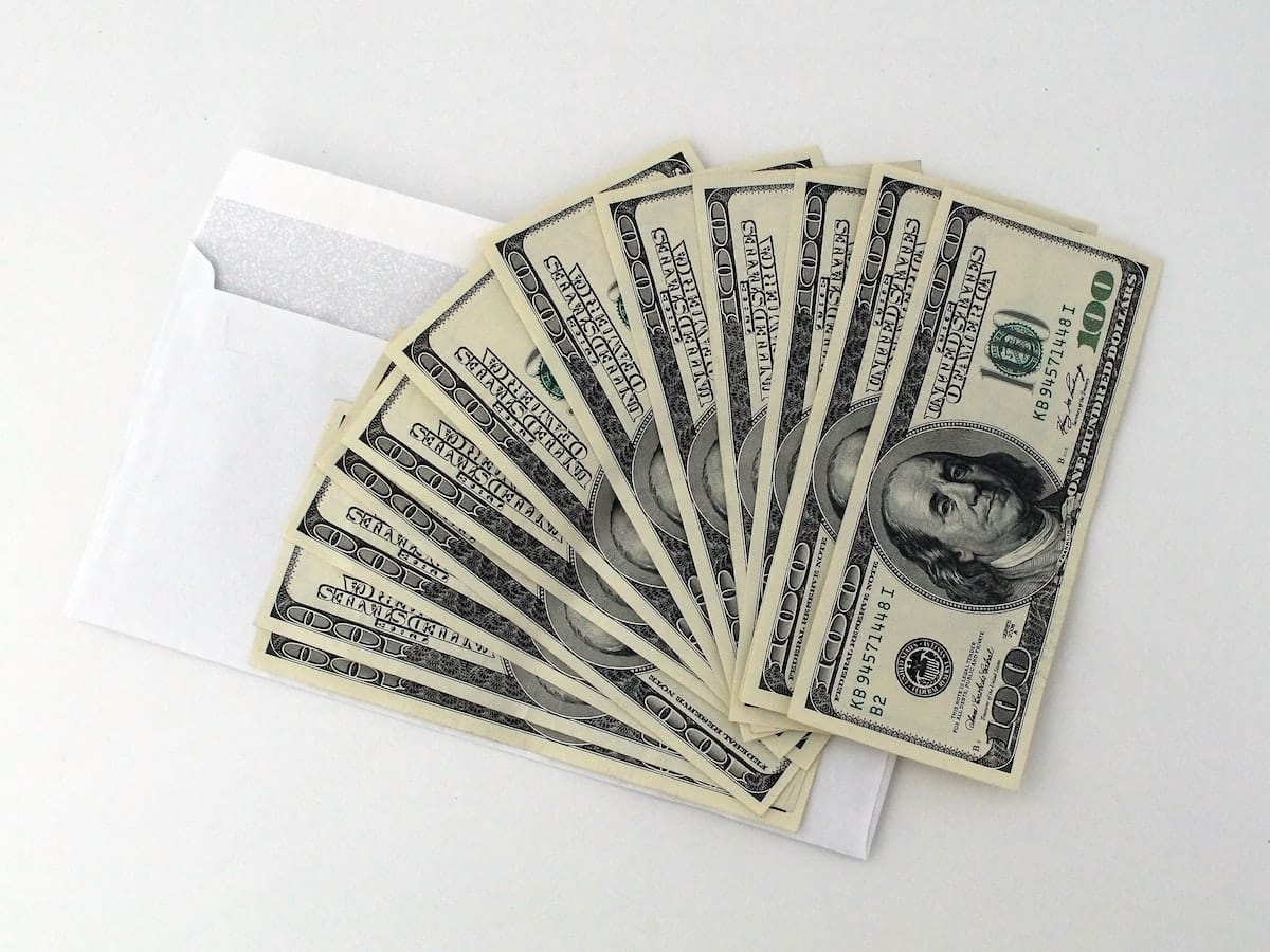 vokas su doleriais pinigai kupurios